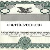 Common Types of Florida Business Bonding Insurance